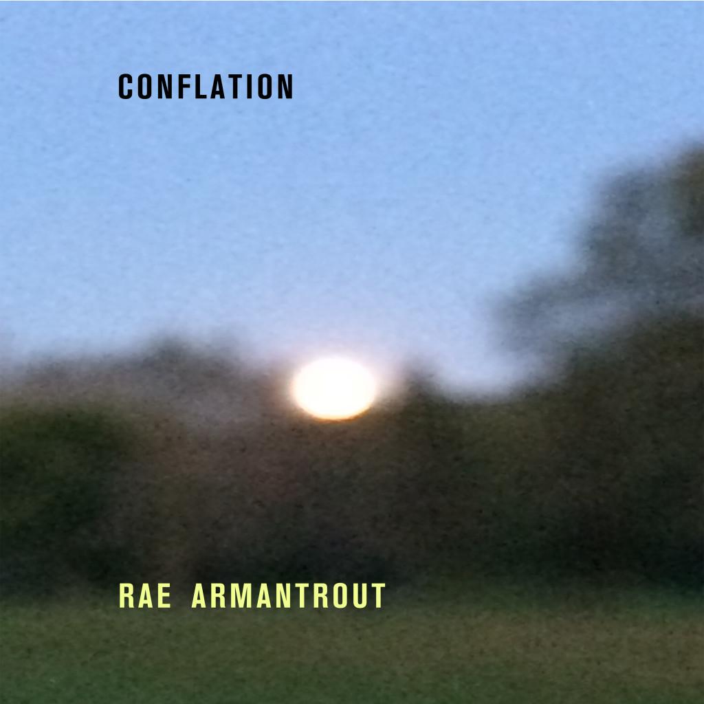 Rae armantrout scumble the book